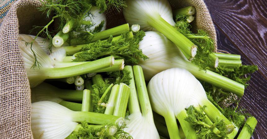 Что можно приготовить из фенхеля и как его использовать в кулинарии и медицине? Практические рекомендации